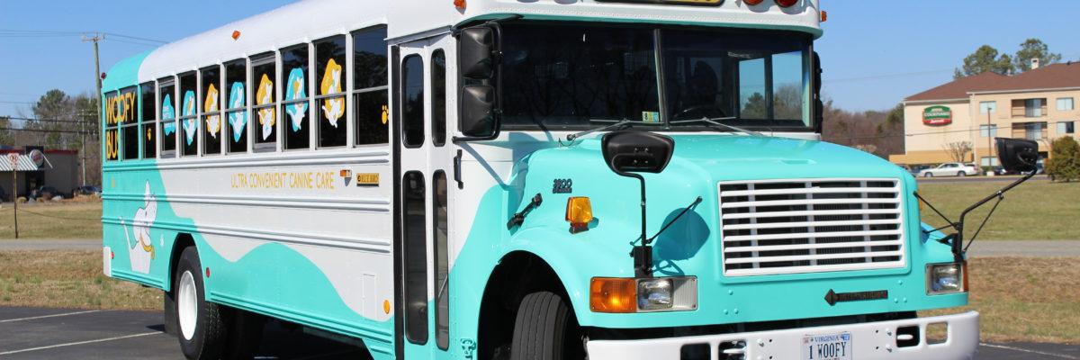 Dog Bus Transportation